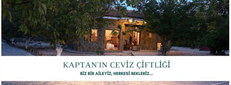 Kaptan'ın Ceviz Çiftliği