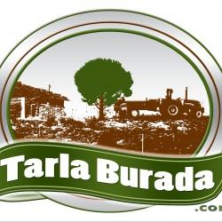 TARLABURADA
