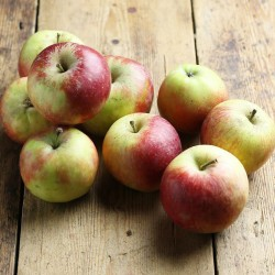 Organik Elma 1kg