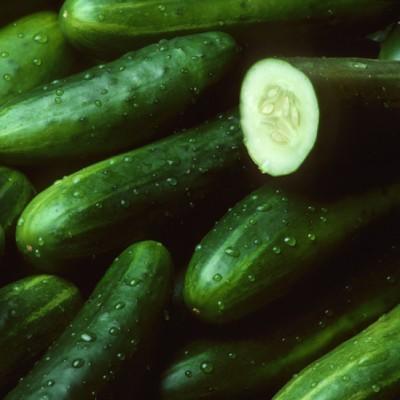 Organik Salatalık 0.5kg