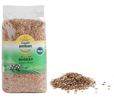 Orgagen Ambarı Organik Buğday 1 Kg