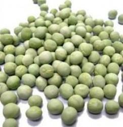 Orgagen Ambarı Organik Bezelye 500 gr
