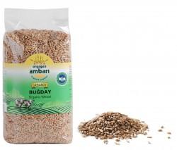 Orgagen Ambarı Organİk Buğday 1 KG