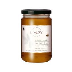 Organik Sertifikalı Çam Balı - 850 Gr