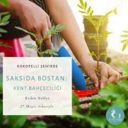 Saksıda Bostan - Kent Bahçeciliği Eğitimi