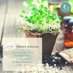 Bitkiler İçin Homeopati (Giriş)