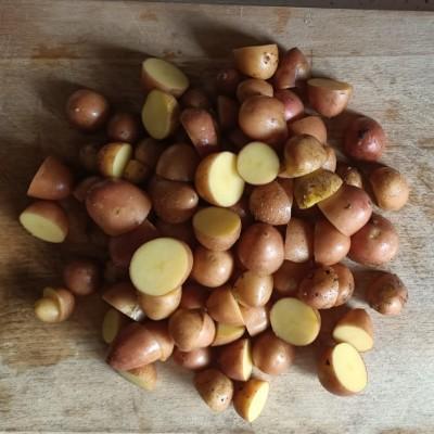 Organik Bebek Patates 0.5Kg