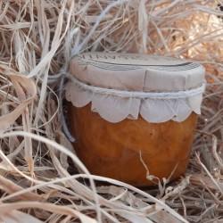 Organik Şekersiz Kayısı Marmelatı 0.33Cc