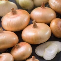 Organik Yassı Soğan 0.5Kg