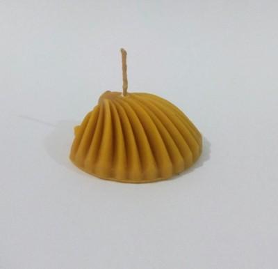 Deniz Kabuğu - Bal Mumu Mum