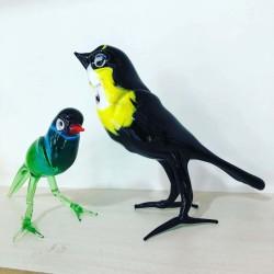 Cam Kuş