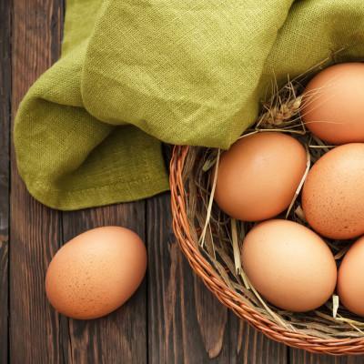 En Organik Yumurta 10 Adet