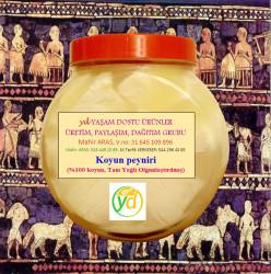 Koyun Peyniri(%100) 1.250 Kg(net), (tanıtım Fiyatıdır)