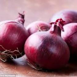 Organik Kırmızı Soğan 5kg