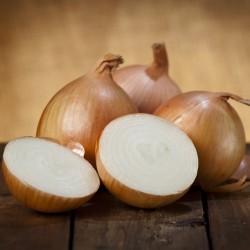 Organik Soğan 0.5kg (Yeni Hasat)