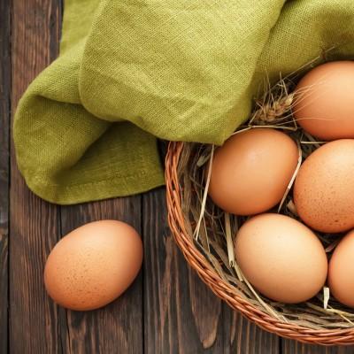 Günlük Tavuk Yumurtası 10 adet